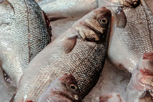 06-3-tipos-de-pescado