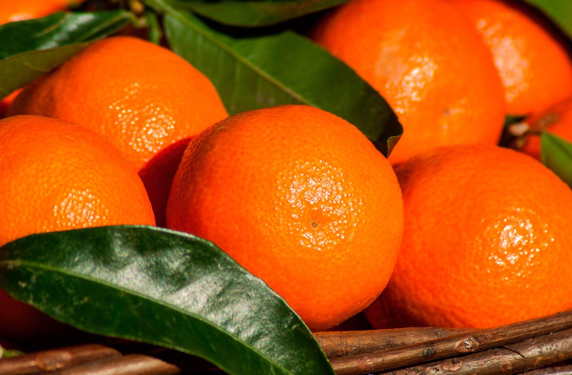 5 razones por las que la mandarina no puede faltar en tu despensa