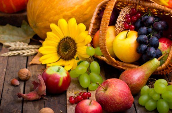 Alimentación para el otoño