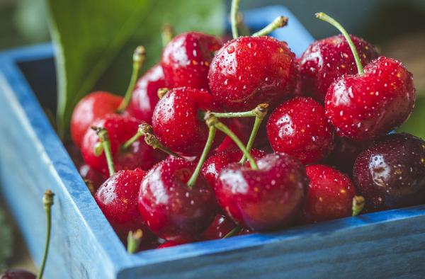 5 Razones para comer cerezas esta temporada
