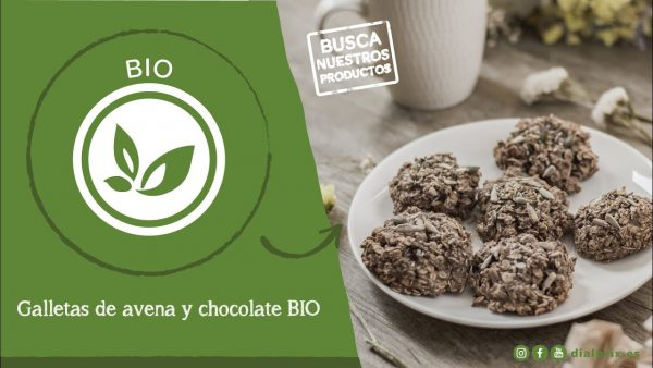Receta de galletas bio de avena y chocolate