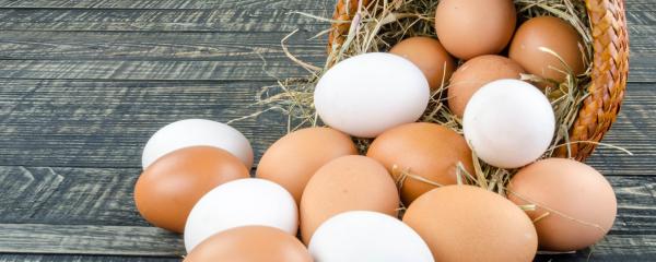 ¿Por qué comer huevos todos los días?